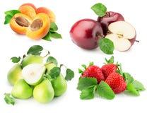 Samling av frukter som isoleras på den vita bakgrunden Arkivbilder