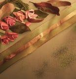 Samling av gamla sidor Handgjort pappers- hantverk Guld- snöra åt på ljust papper Goda för affisch, hälsningar, kort, teman royaltyfri foto