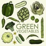 Samling av gröna grönsaker för oberoende eller gemensamt bruk stock illustrationer
