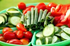 Samling av grönsaker Fotografering för Bildbyråer