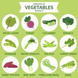 Samling av grönsaker, matvektorillustration, symbolsuppsättning Royaltyfri Foto