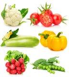Samling av grönsaker som isoleras på den vita bakgrunden Royaltyfri Bild