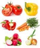 Samling av grönsaker som isoleras på den vita bakgrunden Royaltyfria Bilder