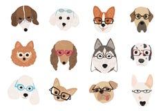 Samling av gullig hundkapplöpning av olika avel som bär exponeringsglas och solglasögon av olika stilar Packe av den roliga teckn vektor illustrationer