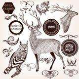Samling av hand drog djur, etiketter och krusidullar i vinta vektor illustrationer