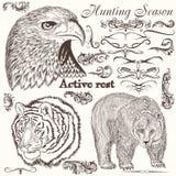 Samling av hand drog djur och krusidullar royaltyfri illustrationer