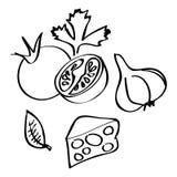 Samling av hand-drog grönsaker Arkivfoto