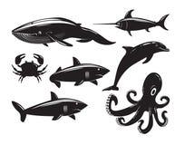 Samling av havsdjur som isoleras på vit bakgrund Royaltyfria Bilder