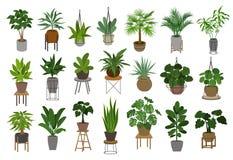 Samling av inomhus trädgårds- växter för olikt dekorhus i krukor och ställningar royaltyfri illustrationer