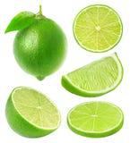 Samling av isolerade limefruktskivor arkivfoto