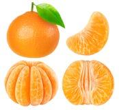 Samling av isolerade tangerinstycken Royaltyfri Foto