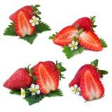 Samling av jordgubben på vit bakgrund Royaltyfria Bilder