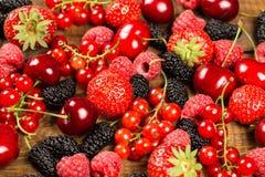 Samling av körsbär, jordgubbar, mullbärsträd, röda vinbär, arkivfoto