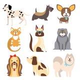 Samling av katter och olika avel för hundkapplöpning stock illustrationer