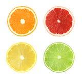 Samling av klippta citrusfrukter som isoleras med den snabba banan Fotografering för Bildbyråer