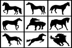 Samling av konturer av svarta hästar Royaltyfria Bilder