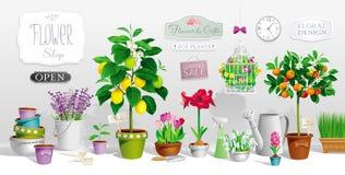 Samling av krukväxter stock illustrationer