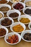 Samling av kryddor. Arkivbild