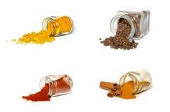 Samling av kryddor Royaltyfri Bild