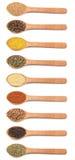 Samling av kryddor i träskedar Royaltyfri Foto