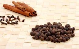 Samling av kryddor på ett underlägg royaltyfria foton