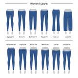 Samling av kvinnors jeans stock illustrationer