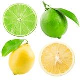 Samling av limefrukter och citroner som isoleras på den vita bakgrunden Arkivbilder