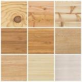 Samling av ljusa wood texturer Royaltyfri Fotografi