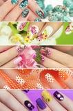 Samling av moderiktig färgrik olik manikyr Fotografering för Bildbyråer