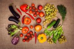 Samling av mogna frukter och grönsaker Royaltyfri Bild