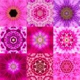 Samling av nio purpurfärgad koncentrisk blomma Mandala Kaleidoscope Arkivbilder
