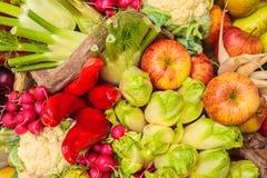 Samling av ny organisk mat Arkivbild