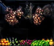 Samling av nya frukt och grönsaker Royaltyfri Fotografi