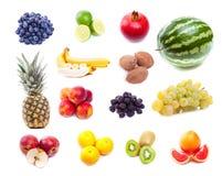 Samling av nya tropiska frukter Royaltyfri Bild