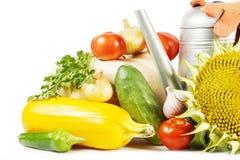 Samling av olika nya frukter och grönsaker Fotografering för Bildbyråer