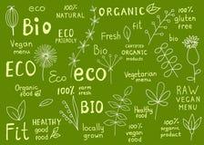 Samling av organisk 100%, naturligt, bio, lantgård, eco, matetikett Fotografering för Bildbyråer
