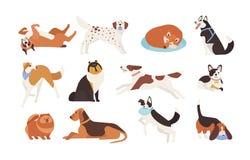 Samling av rolig hundkapplöpning av olika avel som spelar och att sova, ligga som sitter Uppsättning av det gulliga och underhåll stock illustrationer