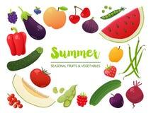 Samling av säsongsbetonade frukter och grönsaker Collec för sommartid Royaltyfri Fotografi