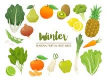 Samling av säsongsbetonade frukter och grönsaker Collec för vintertid Arkivbild