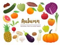 Samling av säsongsbetonade frukter och grönsaker Hösttidcollec Arkivfoto