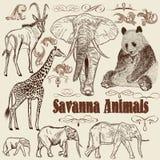 Samling av savann för vektordjurafrikan royaltyfri illustrationer