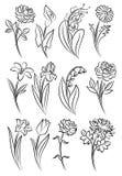 Samling av skisserade blommor Royaltyfri Foto