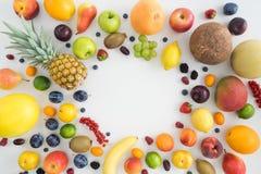 Samling av sommarfrukter Arkivbild