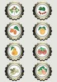 Samling av symboler med frukter Arkivfoton