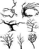Samling av trädkonturer Arkivbild