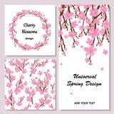 Samling av universella kort med körsbärsröda blomningar Vårwreat Arkivfoto