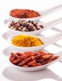 Samling av varma kryddor i små skedar Arkivfoto