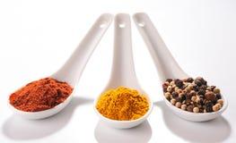 Samling av varma kryddor i små skedar Arkivbild