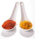 Samling av varma kryddor i små skedar Royaltyfria Foton