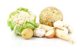Samling av vita grönsaker Arkivfoto